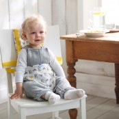 Portable Booster Highchairs