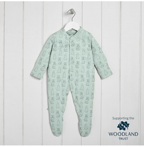 The Little Green Sheep Wild Cotton Organic Sleepsuit (3-6mths) - Rabbit