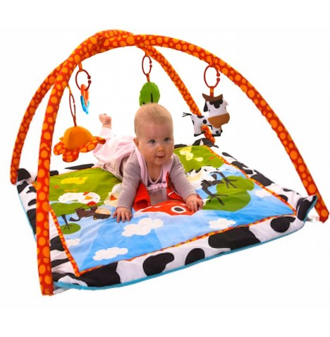 new red kite farm yard baby toy play mat activity gym ebay. Black Bedroom Furniture Sets. Home Design Ideas