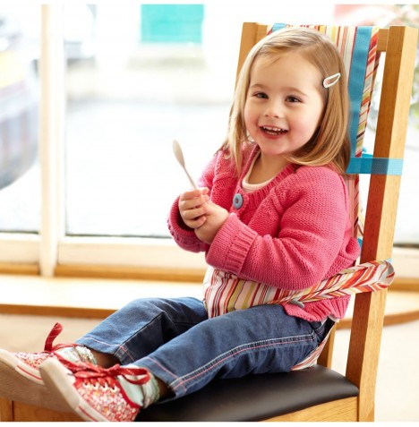 The Gro Company Gro Anywhere Chair Harness - Jazz Stripes